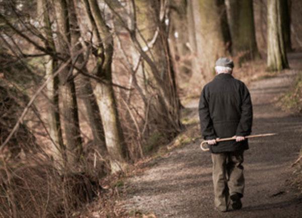 Одинокий старик идет по лесу