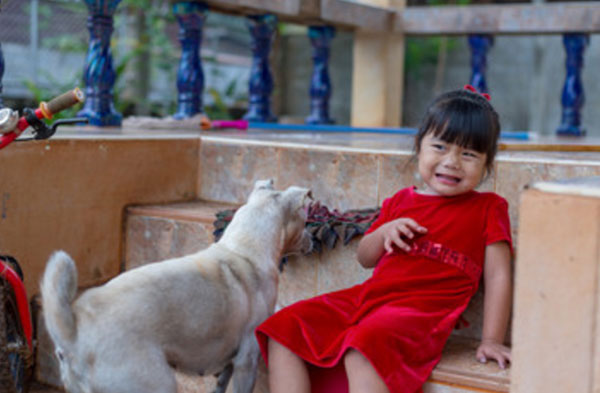 Девочка испугана. Возле нее стоит собака