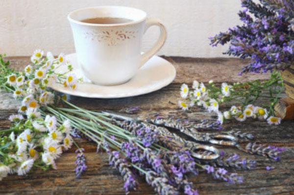 Чашка чая. Рядом лежит ромашка и лаванда