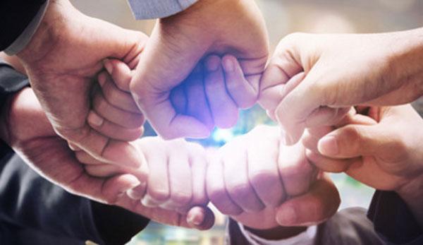 Несколько сотрудников прислоняют свои кулаки друг к другу