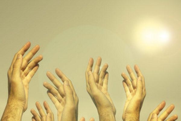 Людские руки тянутся к солнцу