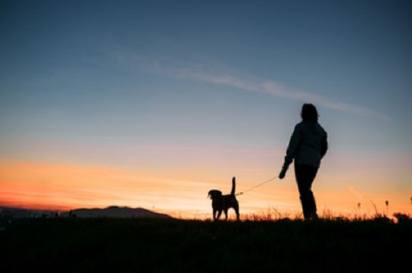 Человек с собакой на прогулке в вечернее время суток